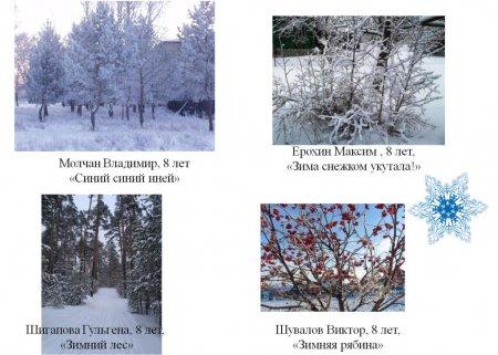 """Причуды зимы"""